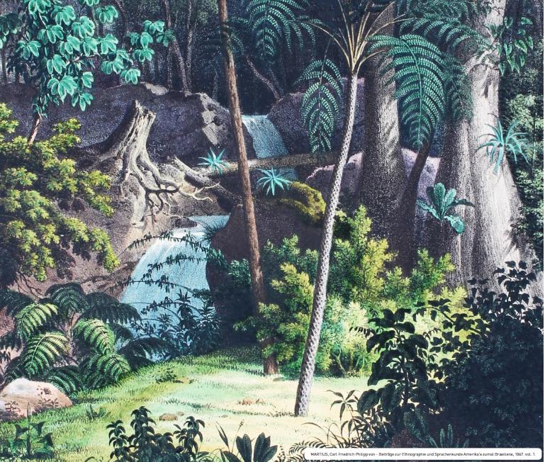 MARTIUS, Carl Friedrich Philipp von - Beitrãge zur Ethnographie und Sprachenkunde Amerika's zumal Brasiliens, 1867. vol. 1.